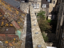 Bath hotel roof with anti seagull & pigeon pest gel applied